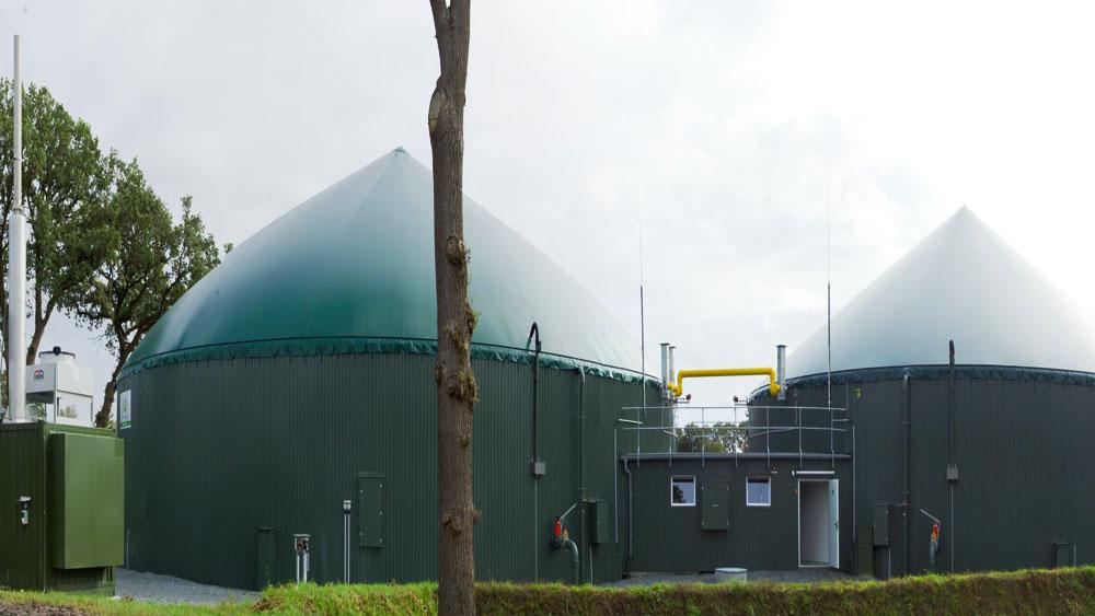 Gasmotor Ölanalyse