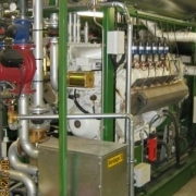 Biogas Engine